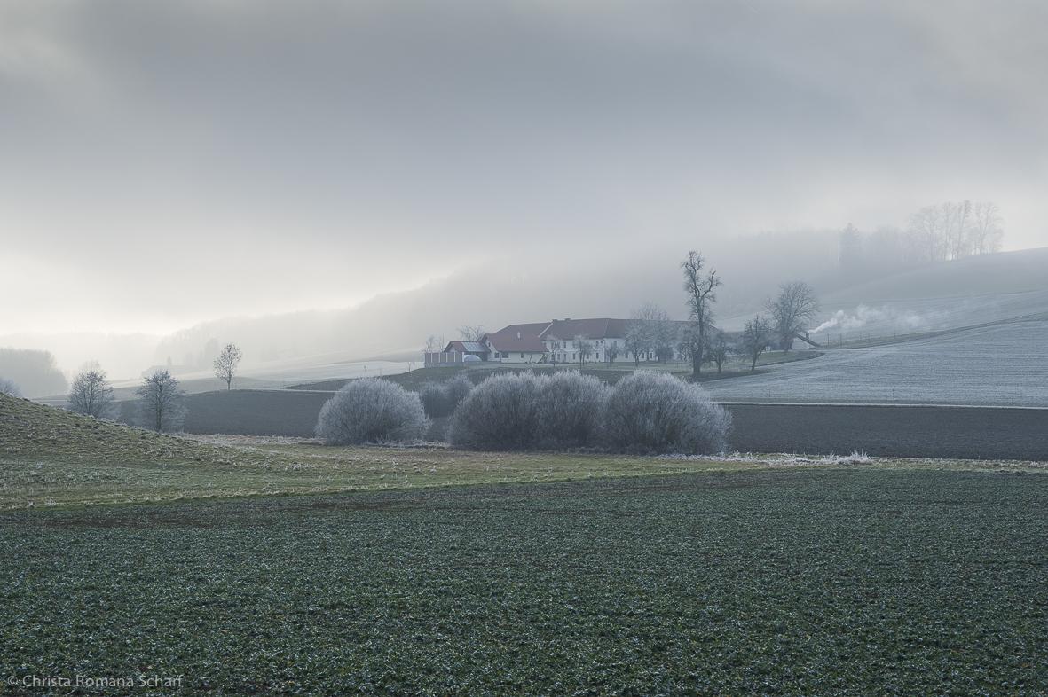 ChristaScharf-700214 Enns-Rabenberg