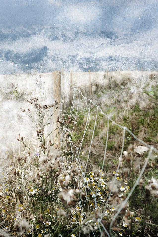Wandschaft #13, Fine-Art-Print auf Hahnemühle Torchon, 30x45cm