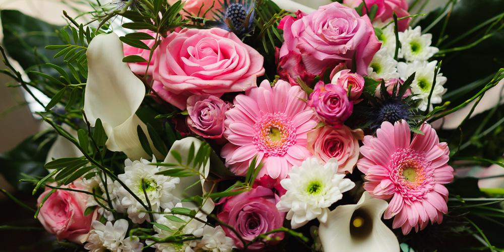 Blumen-701495